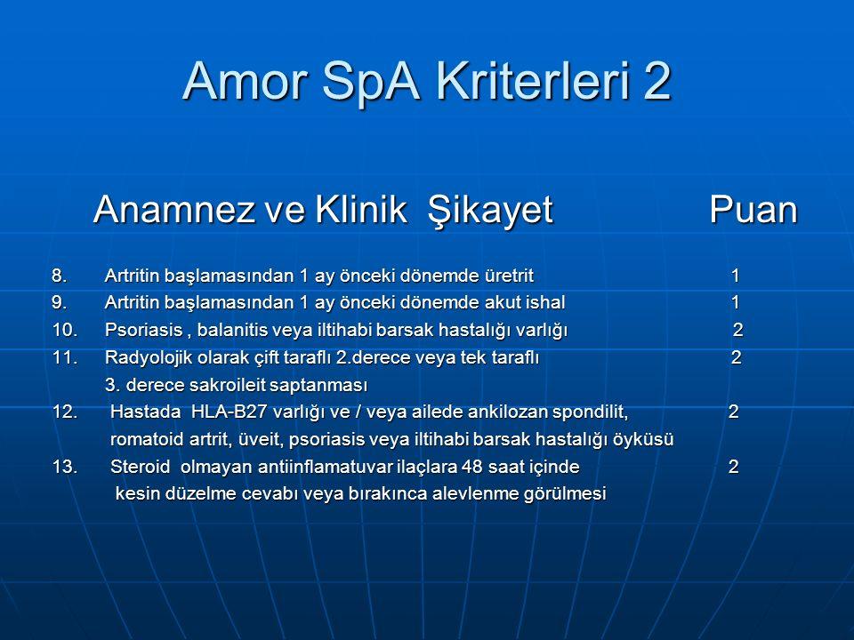 Amor SpA Kriterleri 2 Anamnez ve Klinik Şikayet Puan