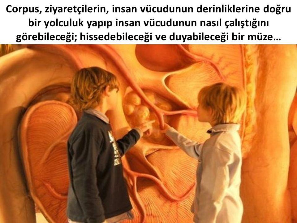 Corpus, ziyaretçilerin, insan vücudunun derinliklerine doğru bir yolculuk yapıp insan vücudunun nasıl çalıştığını görebileceği; hissedebileceği ve duyabileceği bir müze…