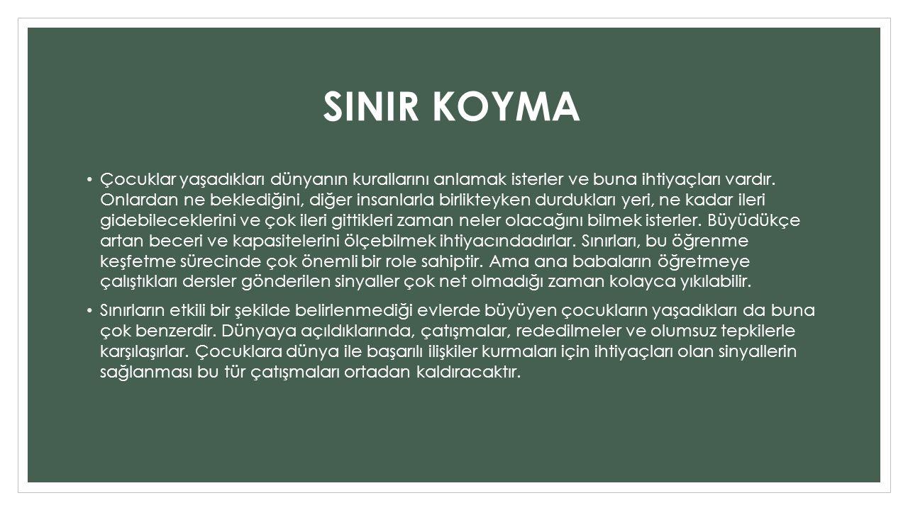 SINIR KOYMA