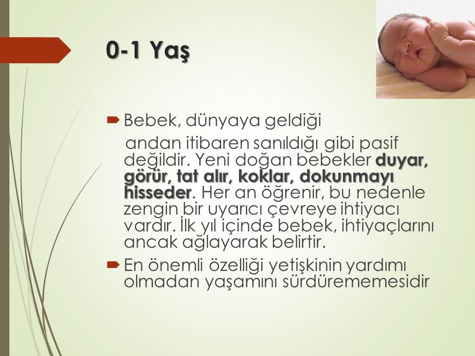 0-1 Yaş Bebek, dünyaya geldiği