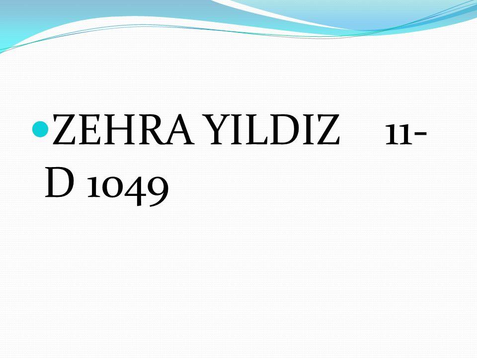 ZEHRA YILDIZ 11-D 1049