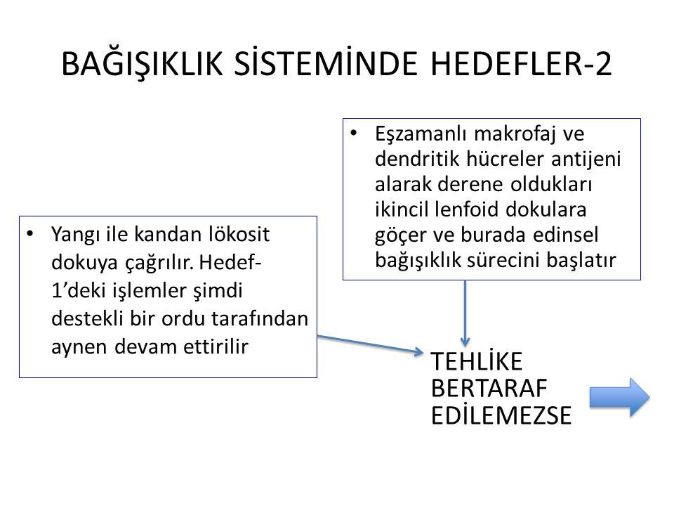 BAĞIŞIKLIK SİSTEMİNDE HEDEFLER-2