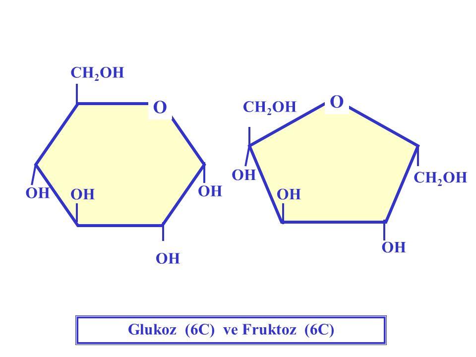 Glukoz (6C) ve Fruktoz (6C)