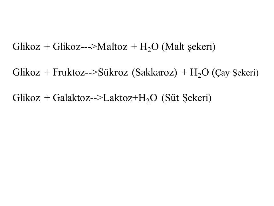 Glikoz + Glikoz--->Maltoz + H2O (Malt şekeri)