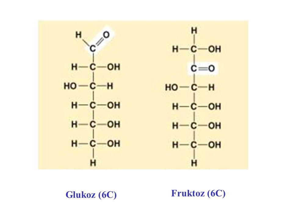 Glukoz (6C) Fruktoz (6C)