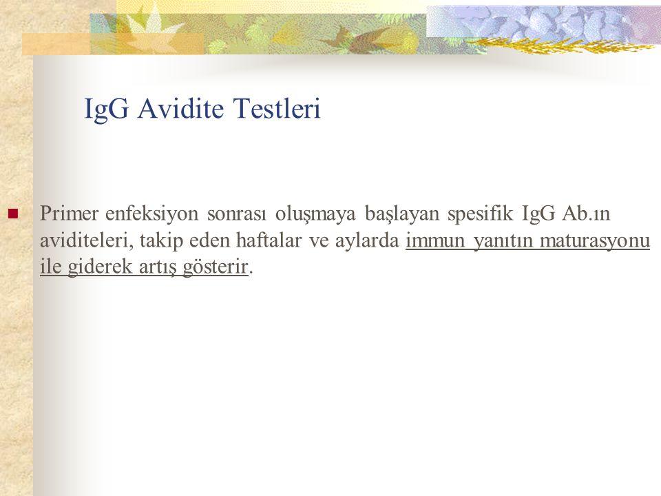 IgG Avidite Testleri