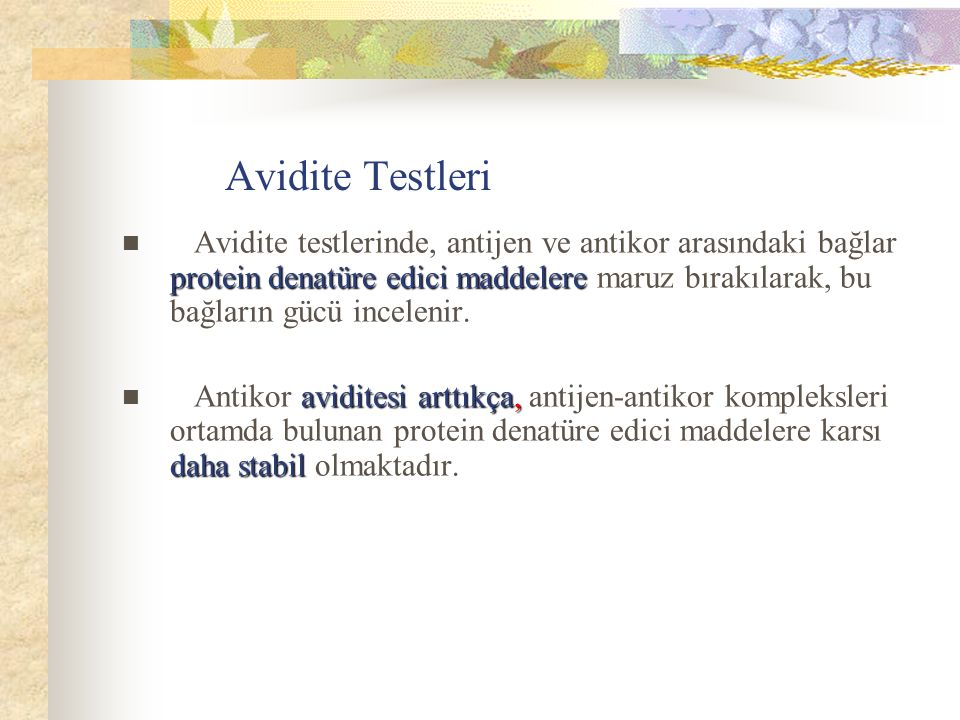 Avidite Testleri