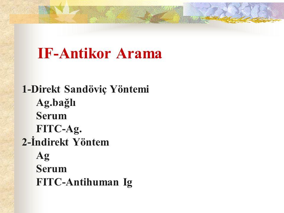 IF-Antikor Arama 1-Direkt Sandöviç Yöntemi Ag.bağlı Serum FITC-Ag.