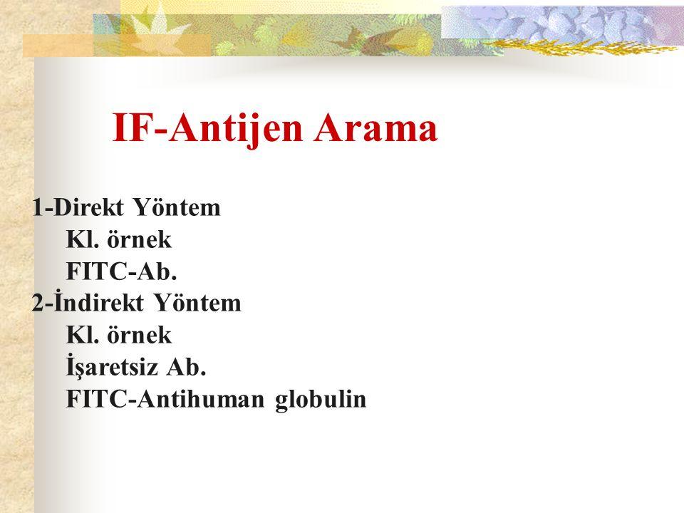 IF-Antijen Arama 1-Direkt Yöntem Kl. örnek FITC-Ab. 2-İndirekt Yöntem