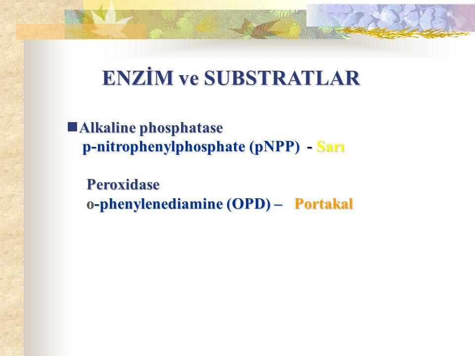 ENZİM ve SUBSTRATLAR Alkaline phosphatase. p-nitrophenylphosphate (pNPP) - Sarı.