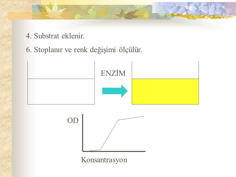 4. Substrat eklenir. 6. Stoplanır ve renk değişimi ölçülür. ENZİM OD Konsantrasyon