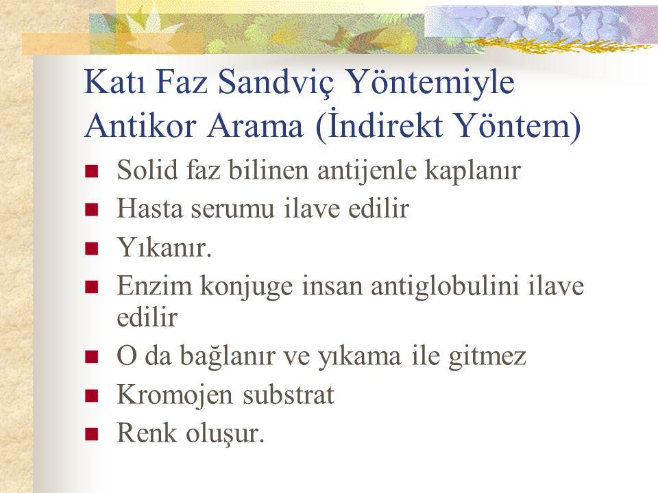 Katı Faz Sandviç Yöntemiyle Antikor Arama (İndirekt Yöntem)