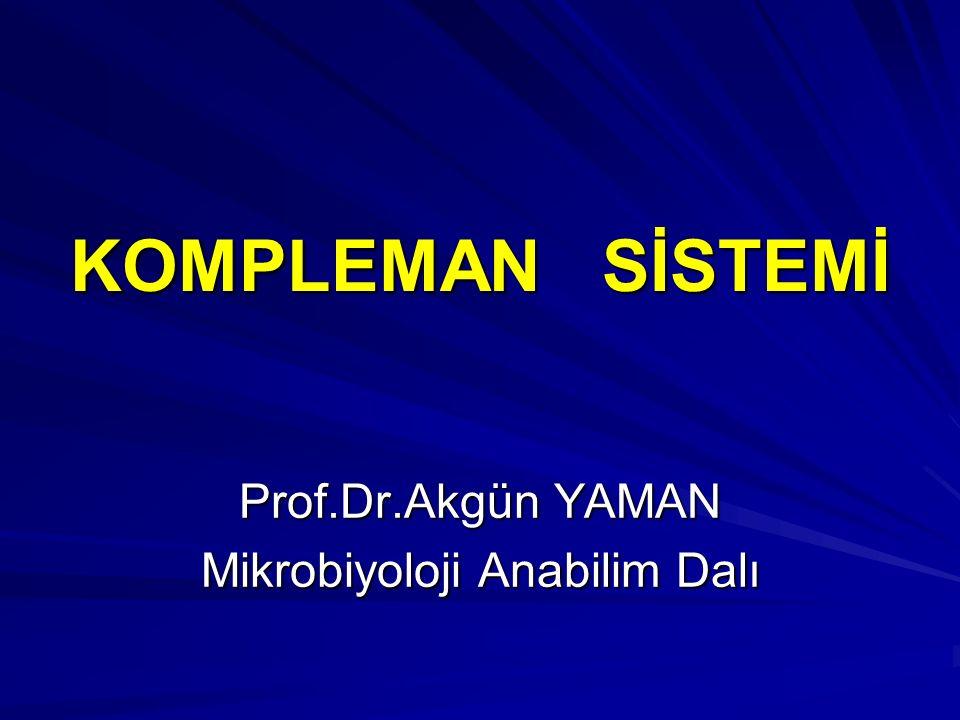 Prof.Dr.Akgün YAMAN Mikrobiyoloji Anabilim Dalı