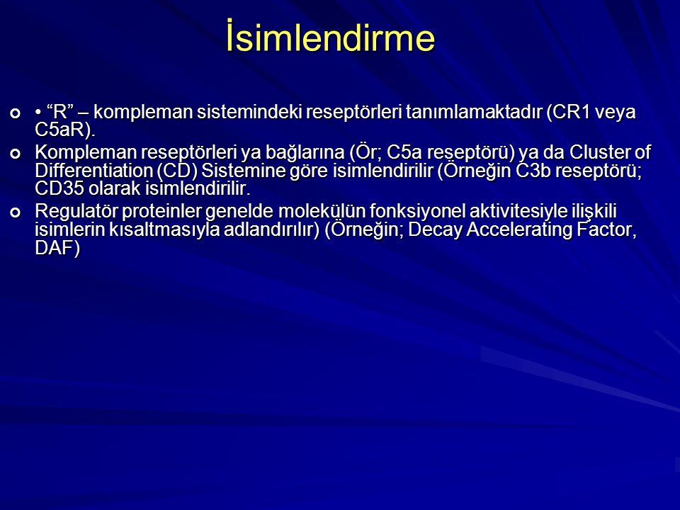 İsimlendirme • R – kompleman sistemindeki reseptörleri tanımlamaktadır (CR1 veya C5aR).