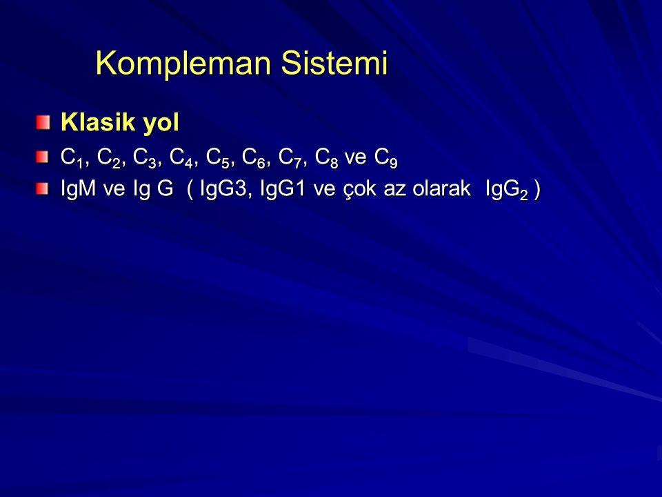 Kompleman Sistemi Klasik yol C1, C2, C3, C4, C5, C6, C7, C8 ve C9