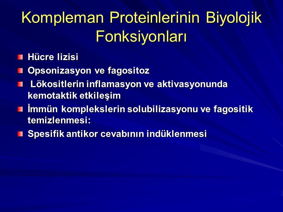 Kompleman Proteinlerinin Biyolojik Fonksiyonları