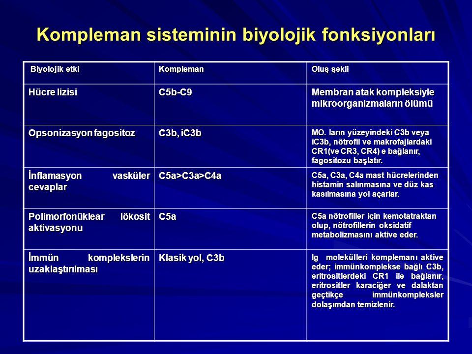 Kompleman sisteminin biyolojik fonksiyonları