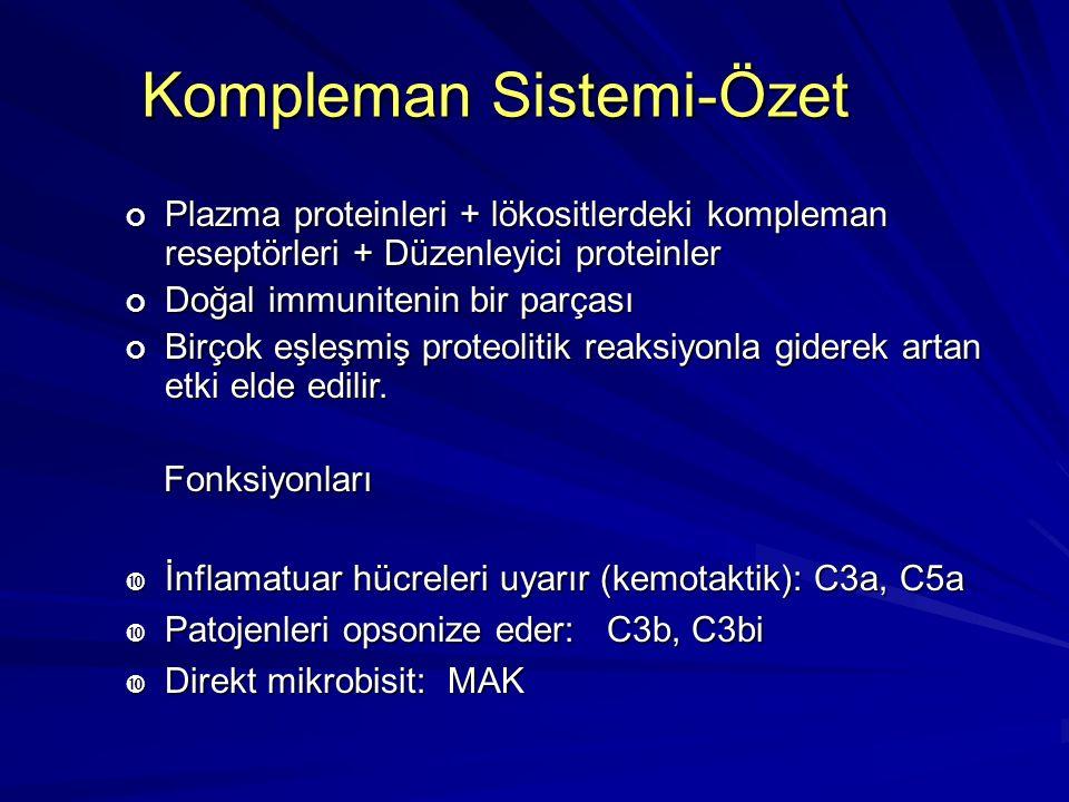 Kompleman Sistemi-Özet