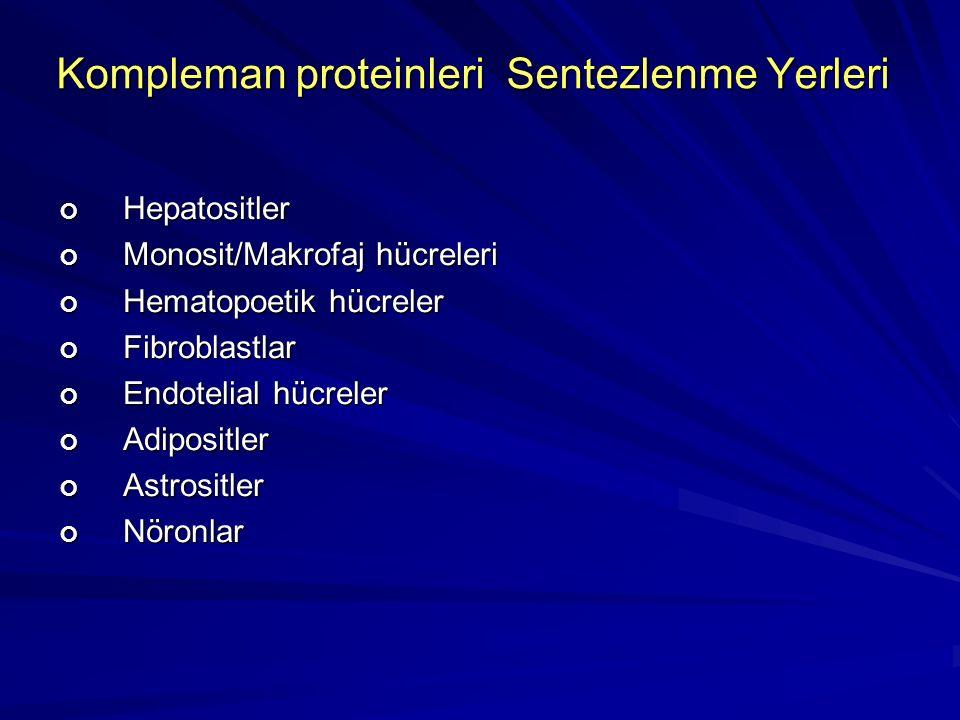 Kompleman proteinleri Sentezlenme Yerleri
