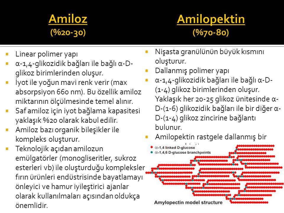 Amiloz (%20-30) Amilopektin