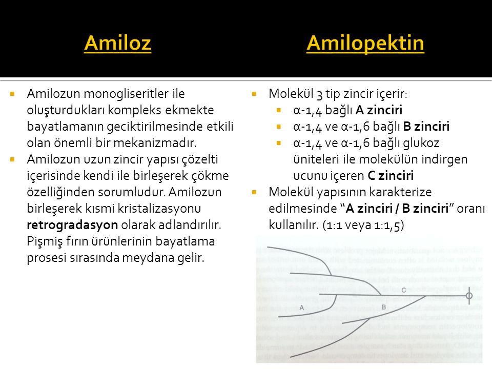 Amiloz Amilopektin. Amilozun monogliseritler ile oluşturdukları kompleks ekmekte bayatlamanın geciktirilmesinde etkili olan önemli bir mekanizmadır.