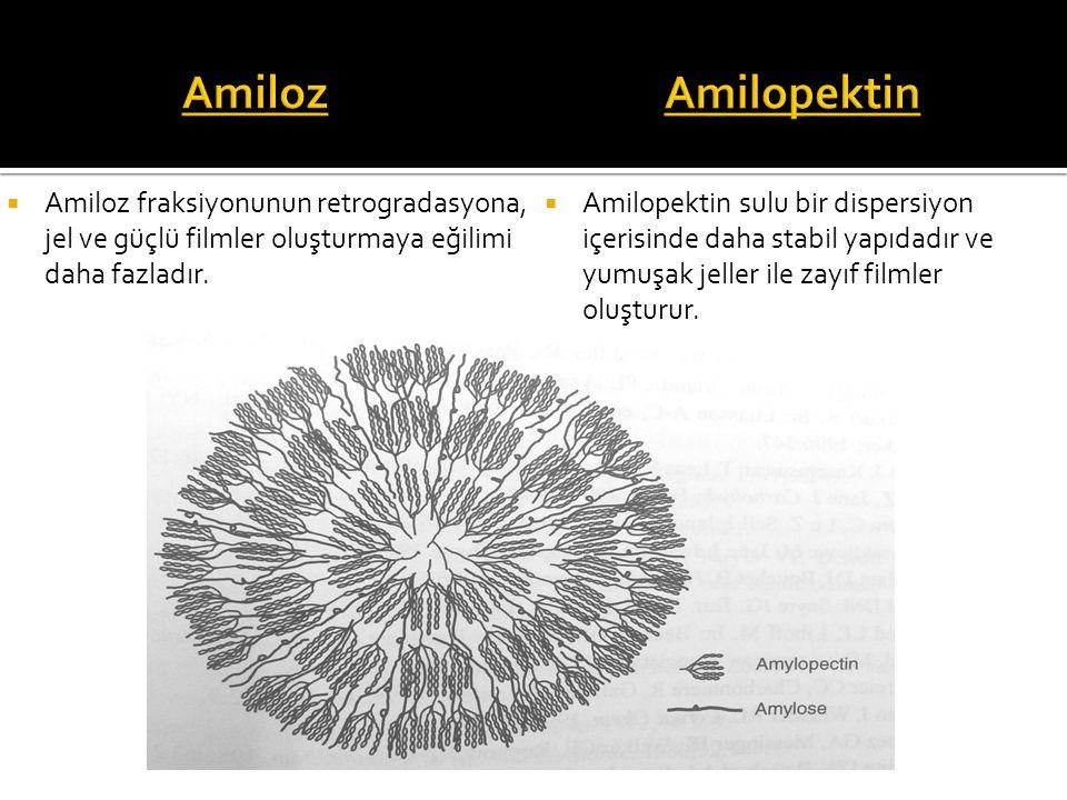 Amiloz Amilopektin. Amiloz fraksiyonunun retrogradasyona, jel ve güçlü filmler oluşturmaya eğilimi daha fazladır.