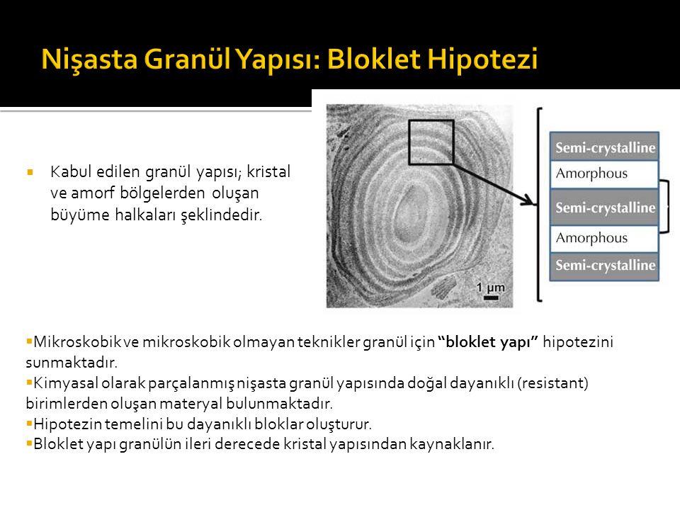 Nişasta Granül Yapısı: Bloklet Hipotezi