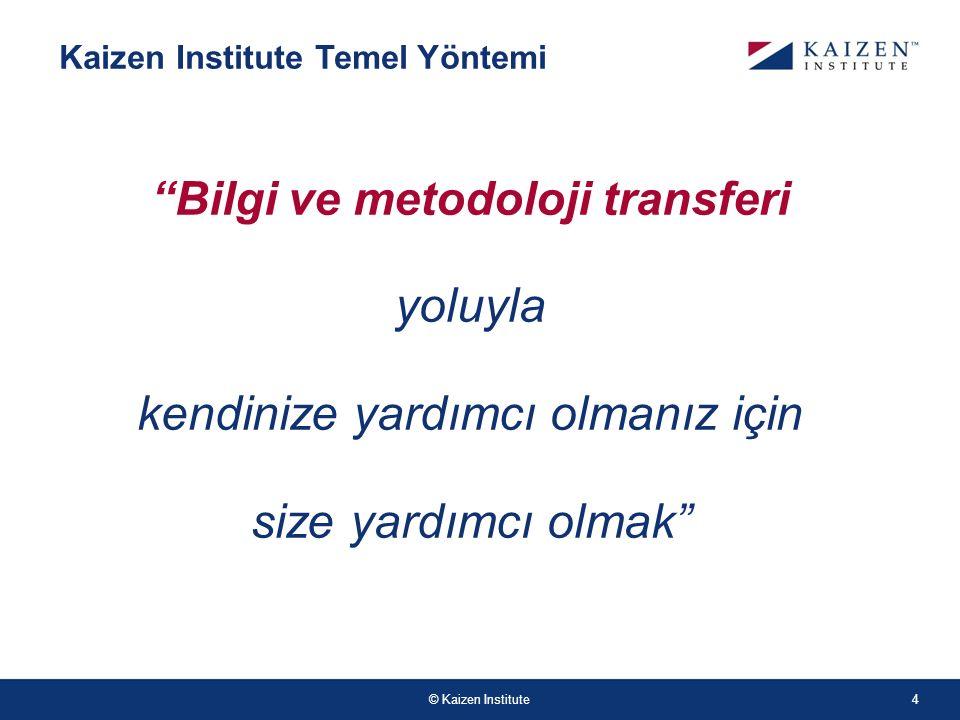 Bilgi ve metodoloji transferi
