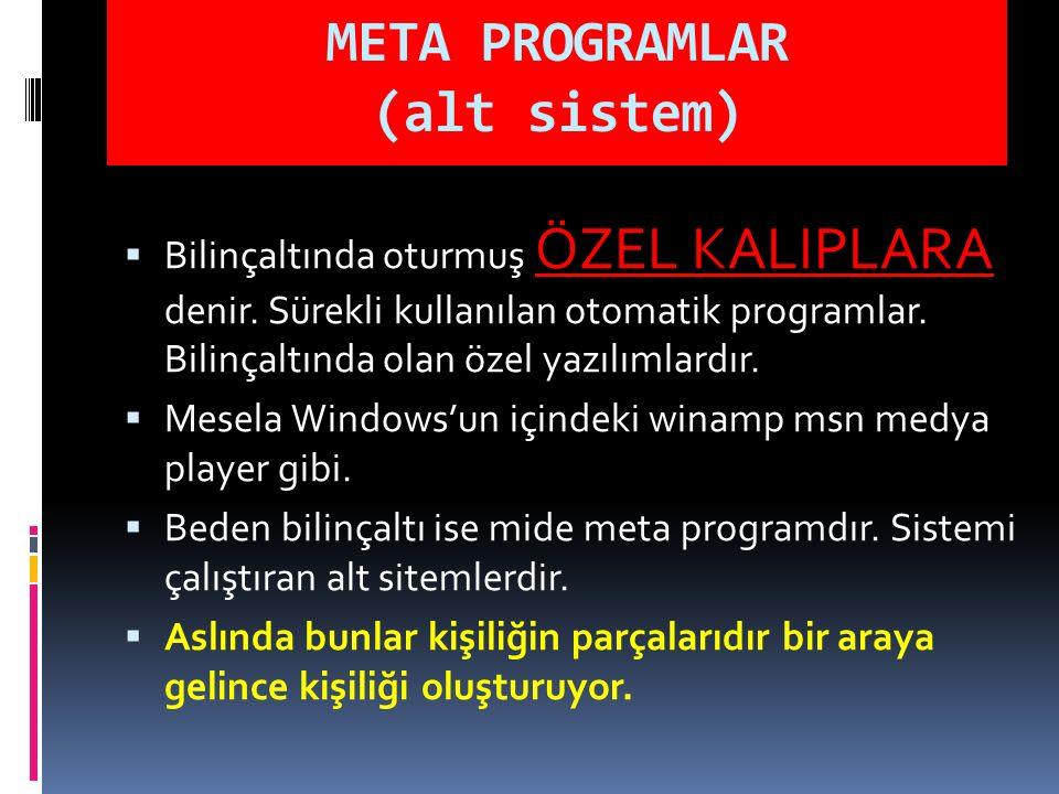 META PROGRAMLAR (alt sistem)