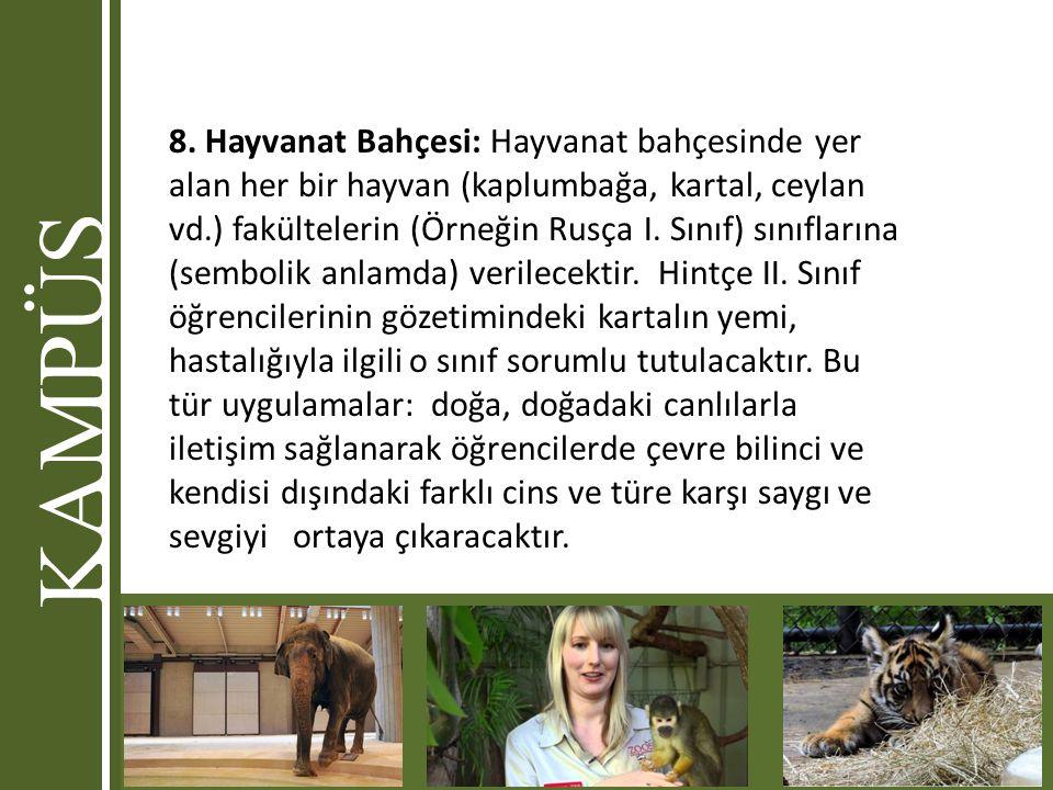 8. Hayvanat Bahçesi: Hayvanat bahçesinde yer alan her bir hayvan (kaplumbağa, kartal, ceylan vd.) fakültelerin (Örneğin Rusça I. Sınıf) sınıflarına (sembolik anlamda) verilecektir. Hintçe II. Sınıf öğrencilerinin gözetimindeki kartalın yemi, hastalığıyla ilgili o sınıf sorumlu tutulacaktır. Bu tür uygulamalar: doğa, doğadaki canlılarla iletişim sağlanarak öğrencilerde çevre bilinci ve kendisi dışındaki farklı cins ve türe karşı saygı ve sevgiyi ortaya çıkaracaktır.