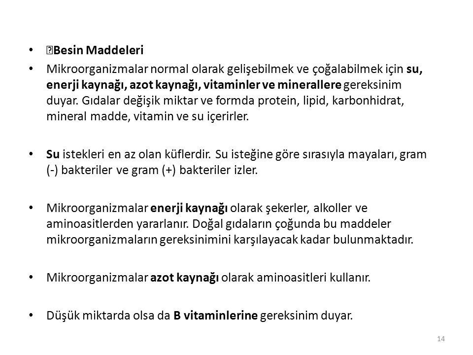 Besin Maddeleri