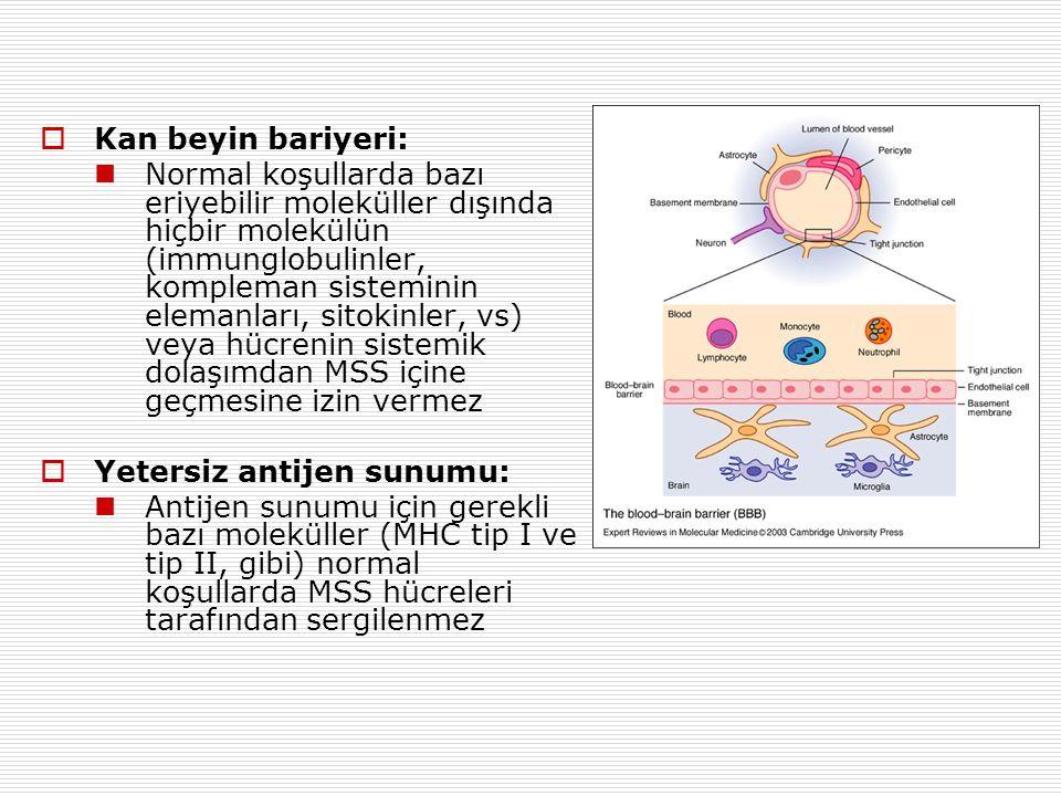 Kan beyin bariyeri: