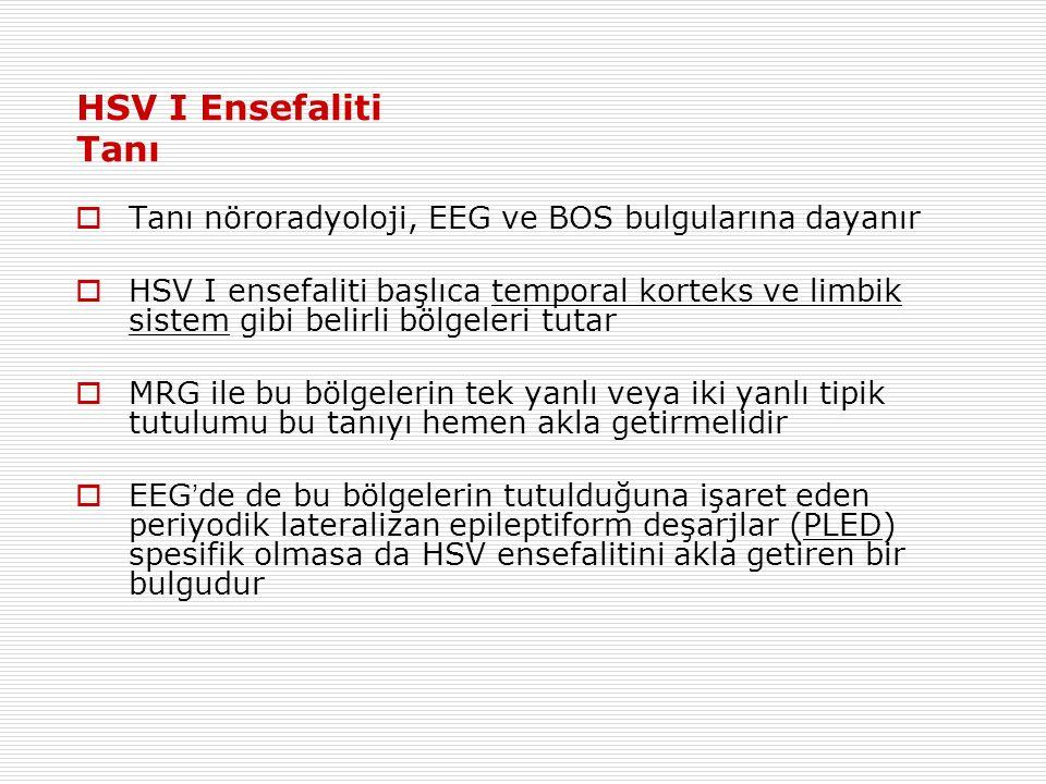 HSV I Ensefaliti Tanı Tanı nöroradyoloji, EEG ve BOS bulgularına dayanır.