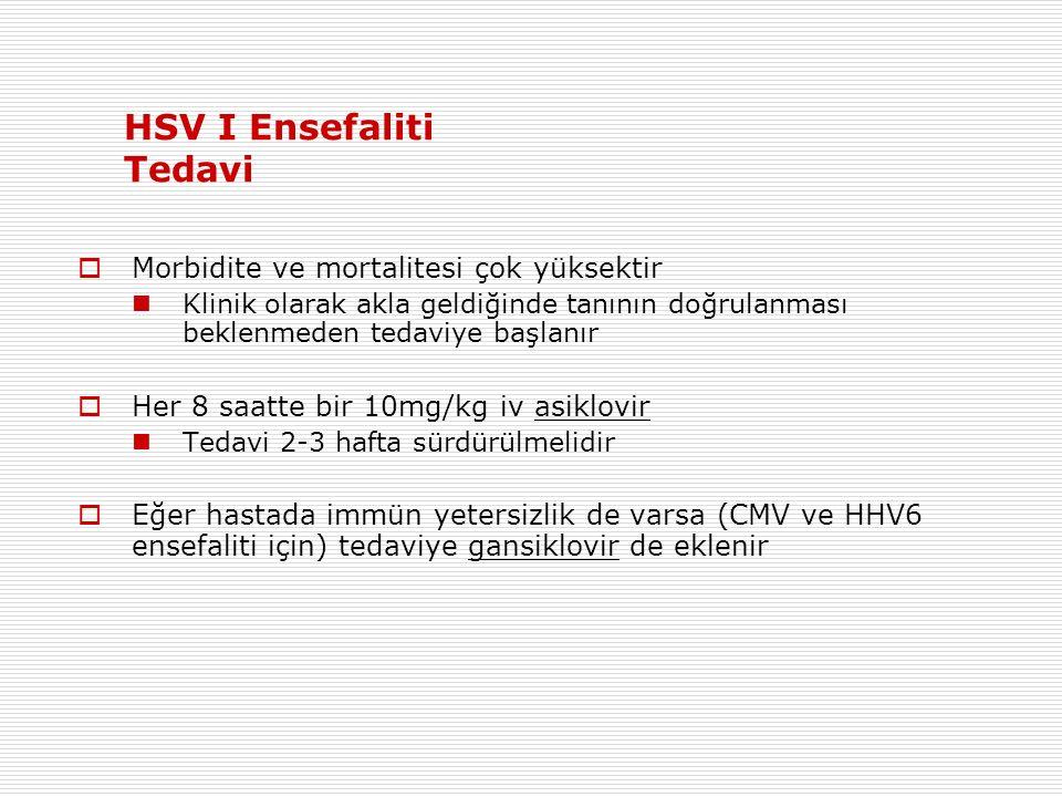 HSV I Ensefaliti Tedavi