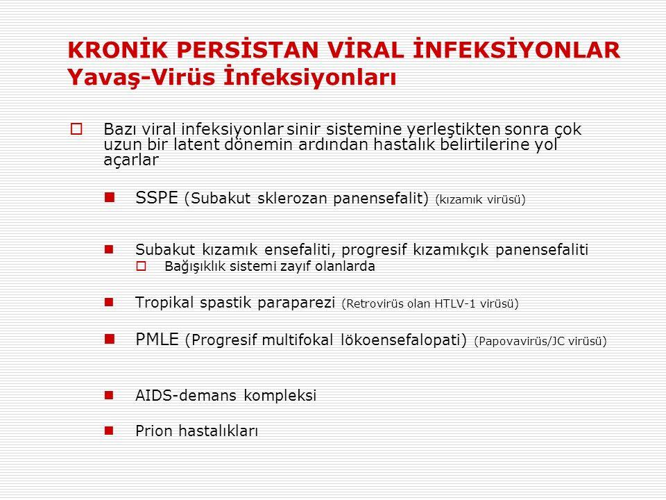 KRONİK PERSİSTAN VİRAL İNFEKSİYONLAR Yavaş-Virüs İnfeksiyonları