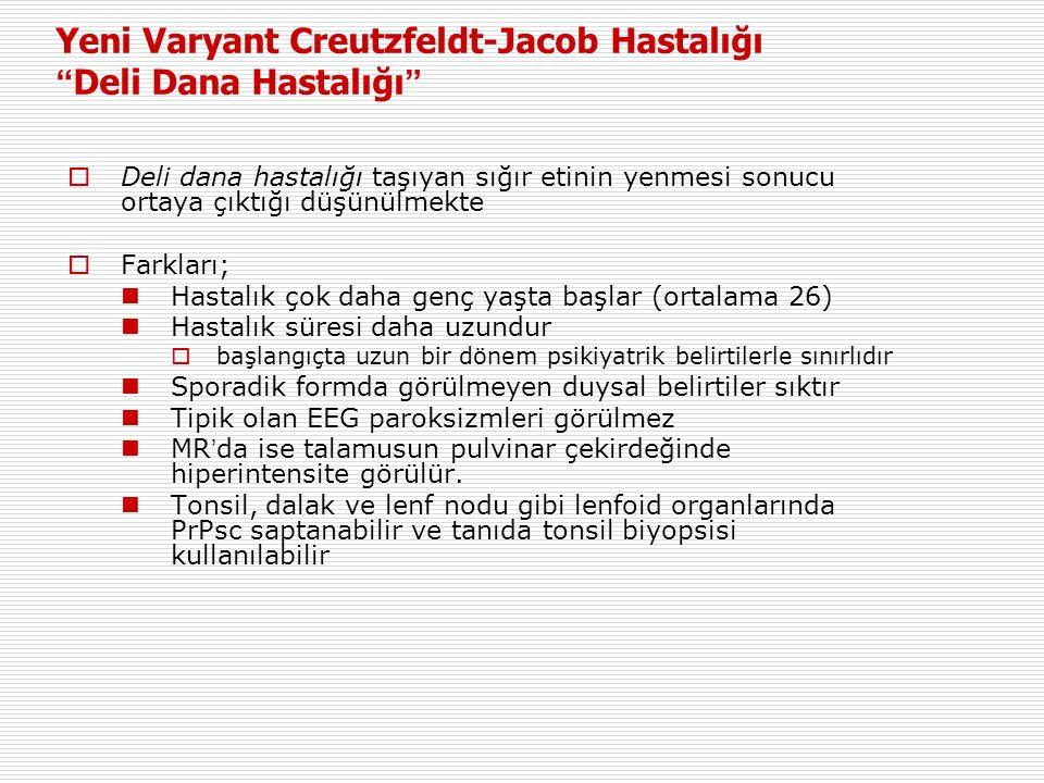 Yeni Varyant Creutzfeldt-Jacob Hastalığı Deli Dana Hastalığı