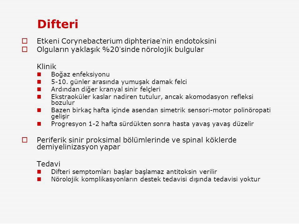 Difteri Etkeni Corynebacterium diphteriae'nin endotoksini