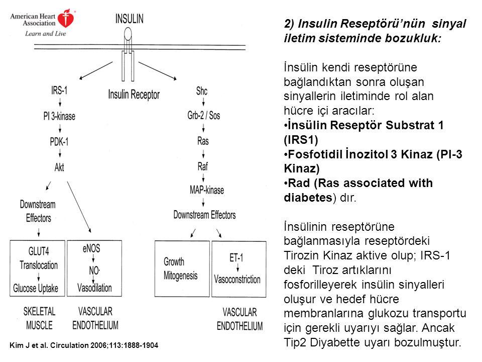 2) Insulin Reseptörü'nün sinyal iletim sisteminde bozukluk:
