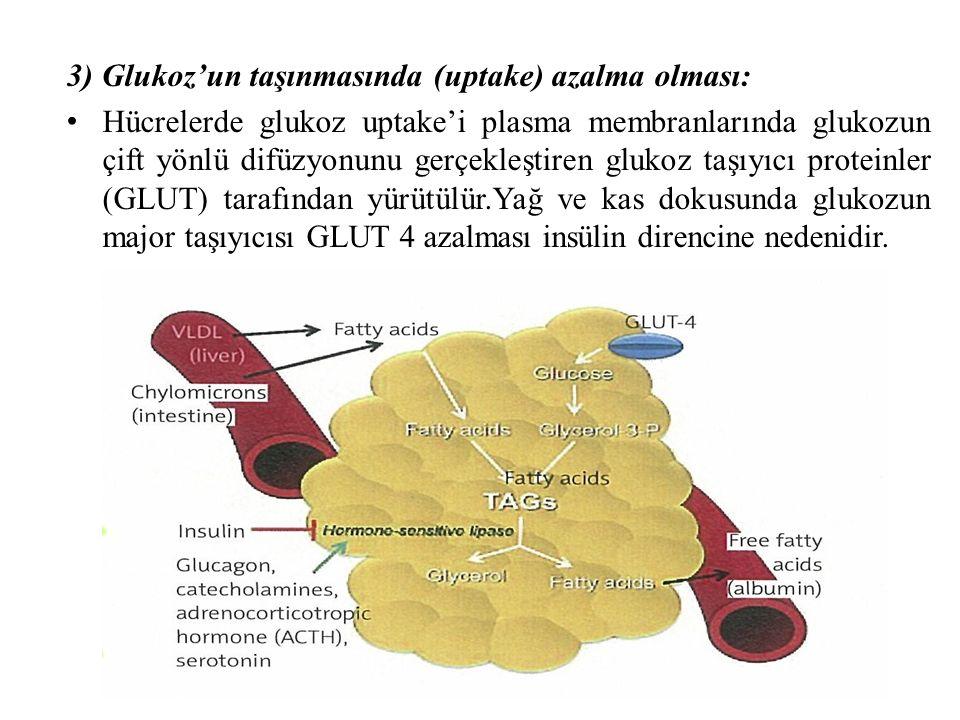 3) Glukoz'un taşınmasında (uptake) azalma olması: