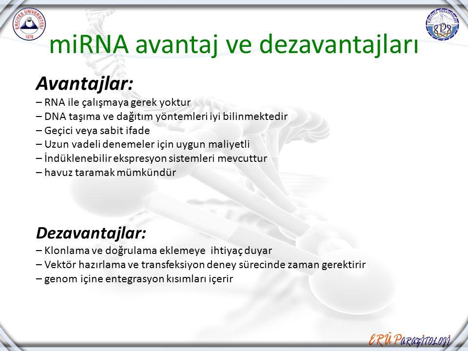 miRNA avantaj ve dezavantajları