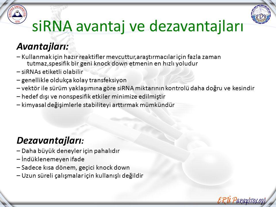 siRNA avantaj ve dezavantajları