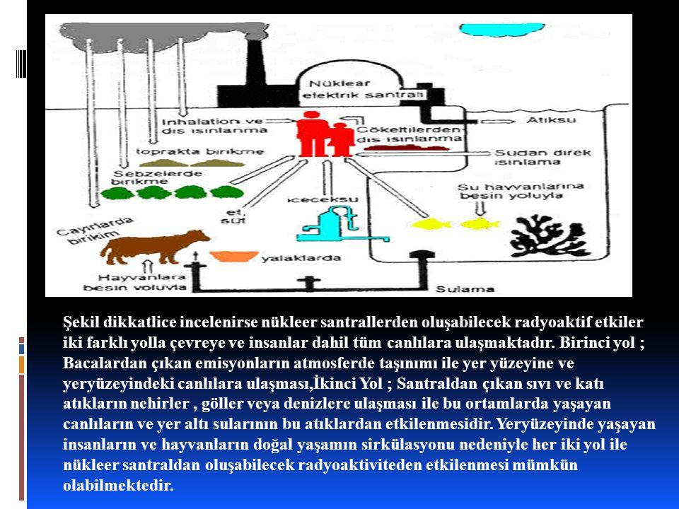 Şekil dikkatlice incelenirse nükleer santrallerden oluşabilecek radyoaktif etkiler iki farklı yolla çevreye ve insanlar dahil tüm canlılara ulaşmaktadır. Birinci yol ; Bacalardan çıkan emisyonların atmosferde taşınımı ile yer yüzeyine ve yeryüzeyindeki canlılara ulaşması,İkinci Yol ; Santraldan çıkan sıvı ve katı atıkların nehirler , göller veya denizlere ulaşması ile bu ortamlarda yaşayan canlıların ve yer altı sularının bu atıklardan etkilenmesidir.