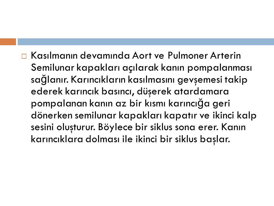Kasılmanın devamında Aort ve Pulmoner Arterin Semilunar kapakları açılarak kanın pompalanması sağlanır.