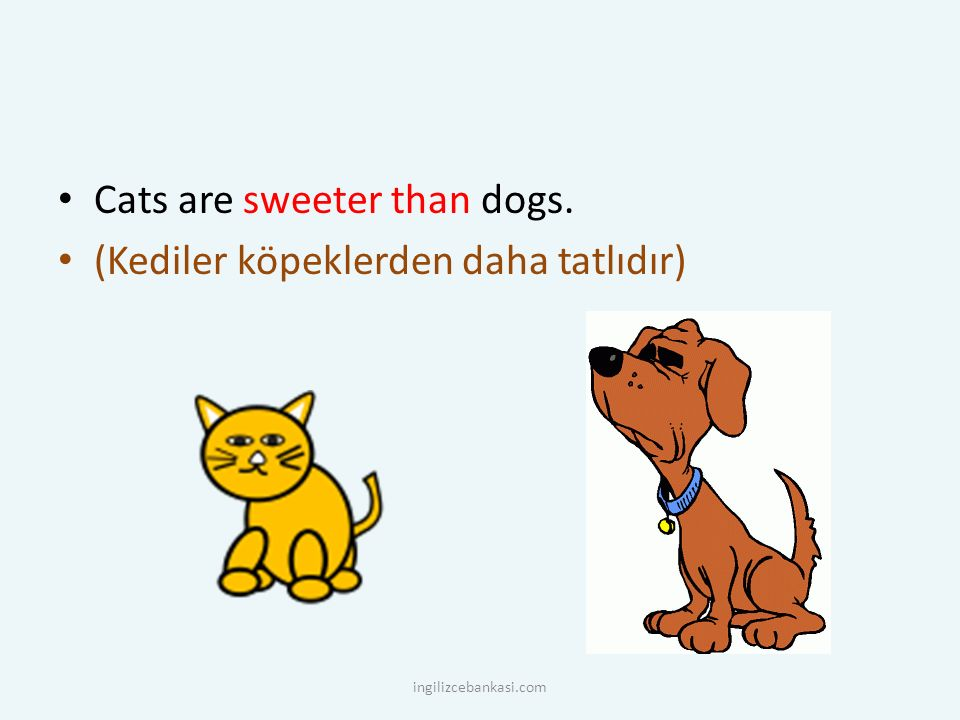 Cats are sweeter than dogs. (Kediler köpeklerden daha tatlıdır)