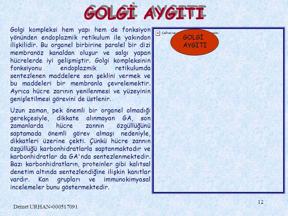 GOLGİ AYGITI