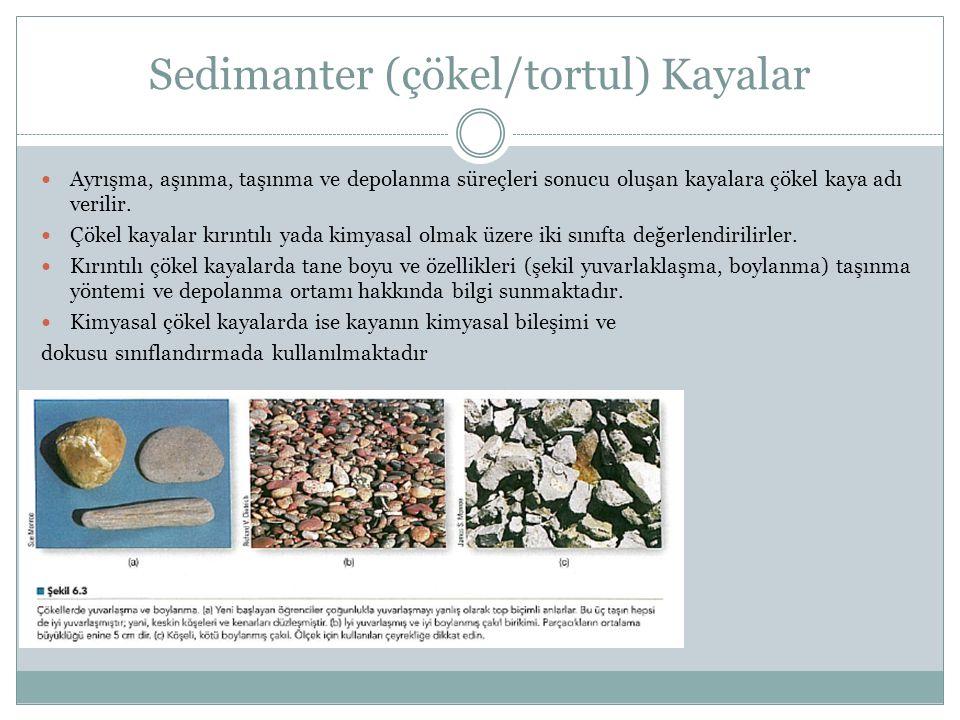 Sedimanter (çökel/tortul) Kayalar