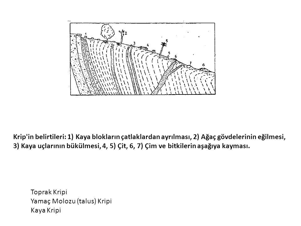 Krip in belirtileri: 1) Kaya blokların çatlaklardan ayrılması, 2) Ağaç gövdelerinin eğilmesi,