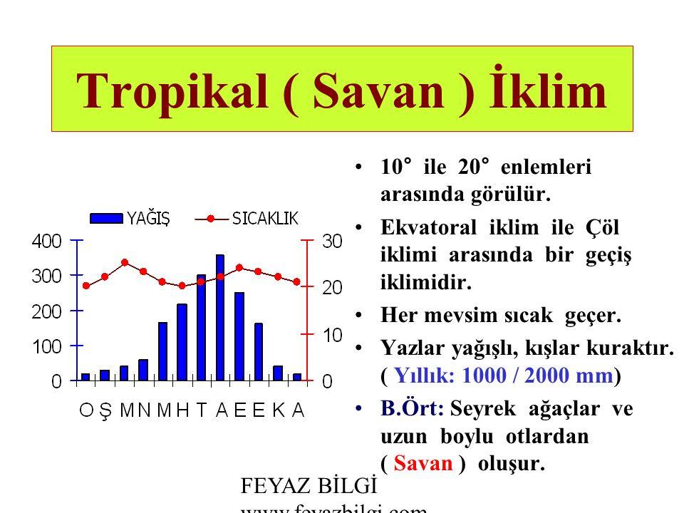 Tropikal ( Savan ) İklim