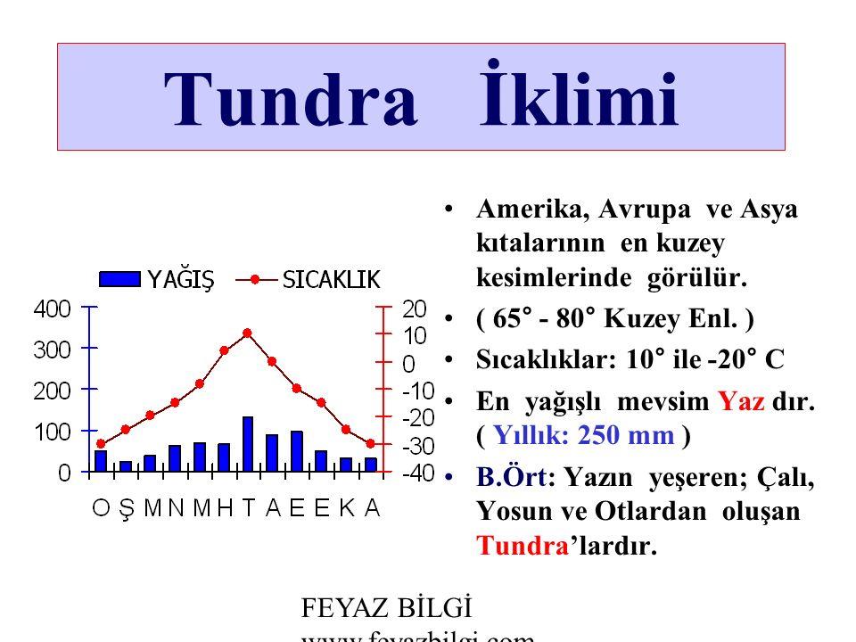 Tundra İklimi Amerika, Avrupa ve Asya kıtalarının en kuzey kesimlerinde görülür. ( 65° - 80° Kuzey Enl. )