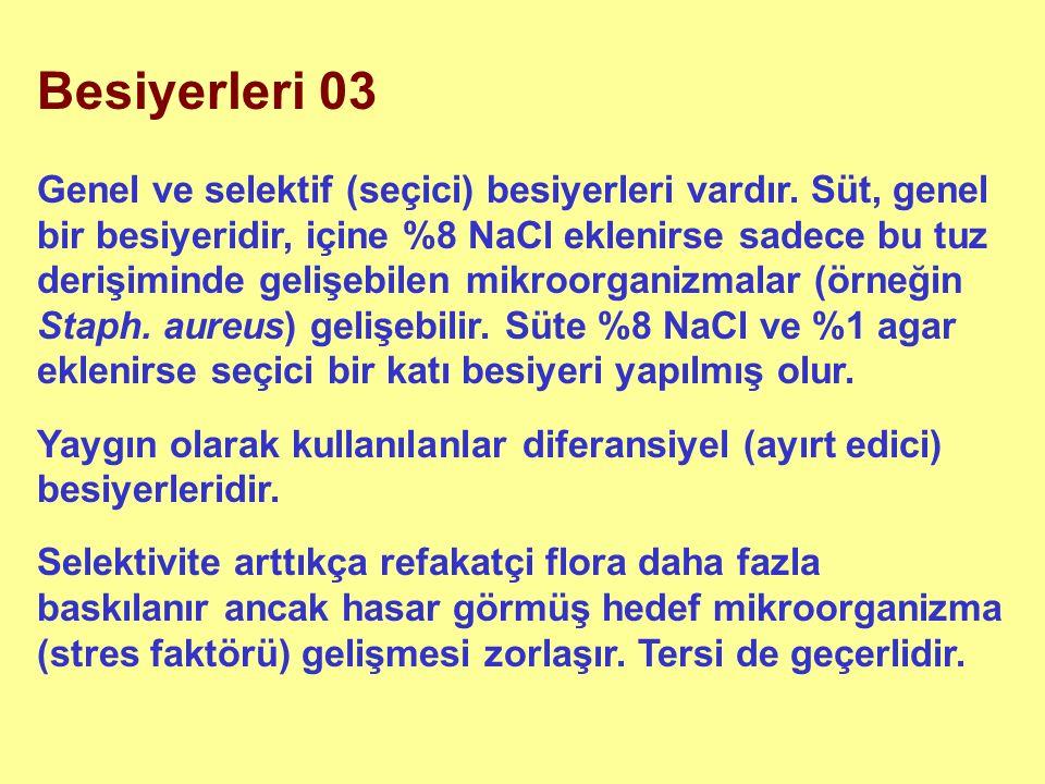 Besiyerleri 03